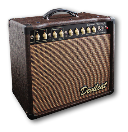 stacks image 8148639 216 - Devilcat Amplifiers Jimmy 2x10 Combo Guitar Amp Custom Snakeskin